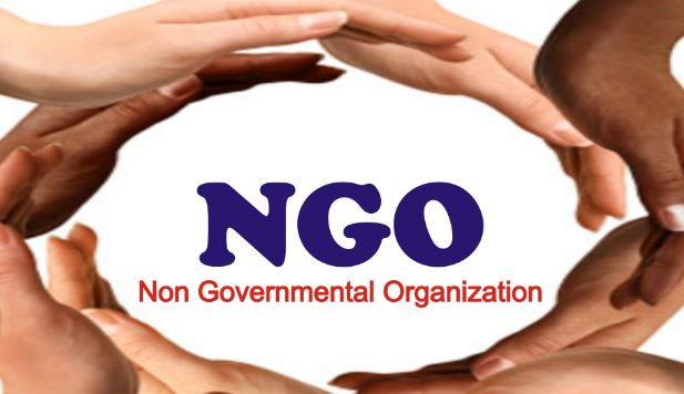 NGO full form is non-profit organization