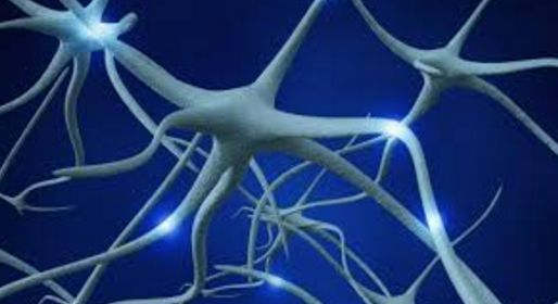 Strong Nervous System