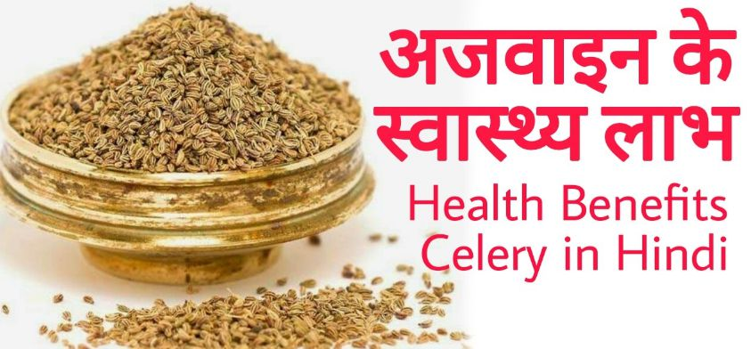 What is Celery in Hindi with 16 Ajwain Fayde (अजवाइन )